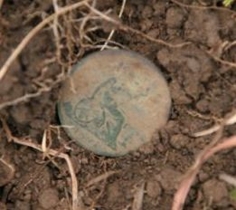 coin shooting