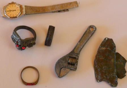 Metal Detecting Ring Finds
