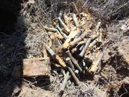 Bullets and packaging still surviving